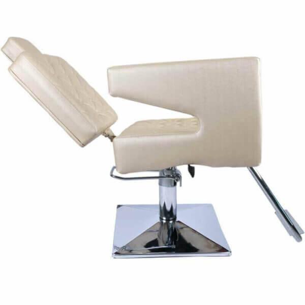 Cadeira de Cabeleireiro Reclinável